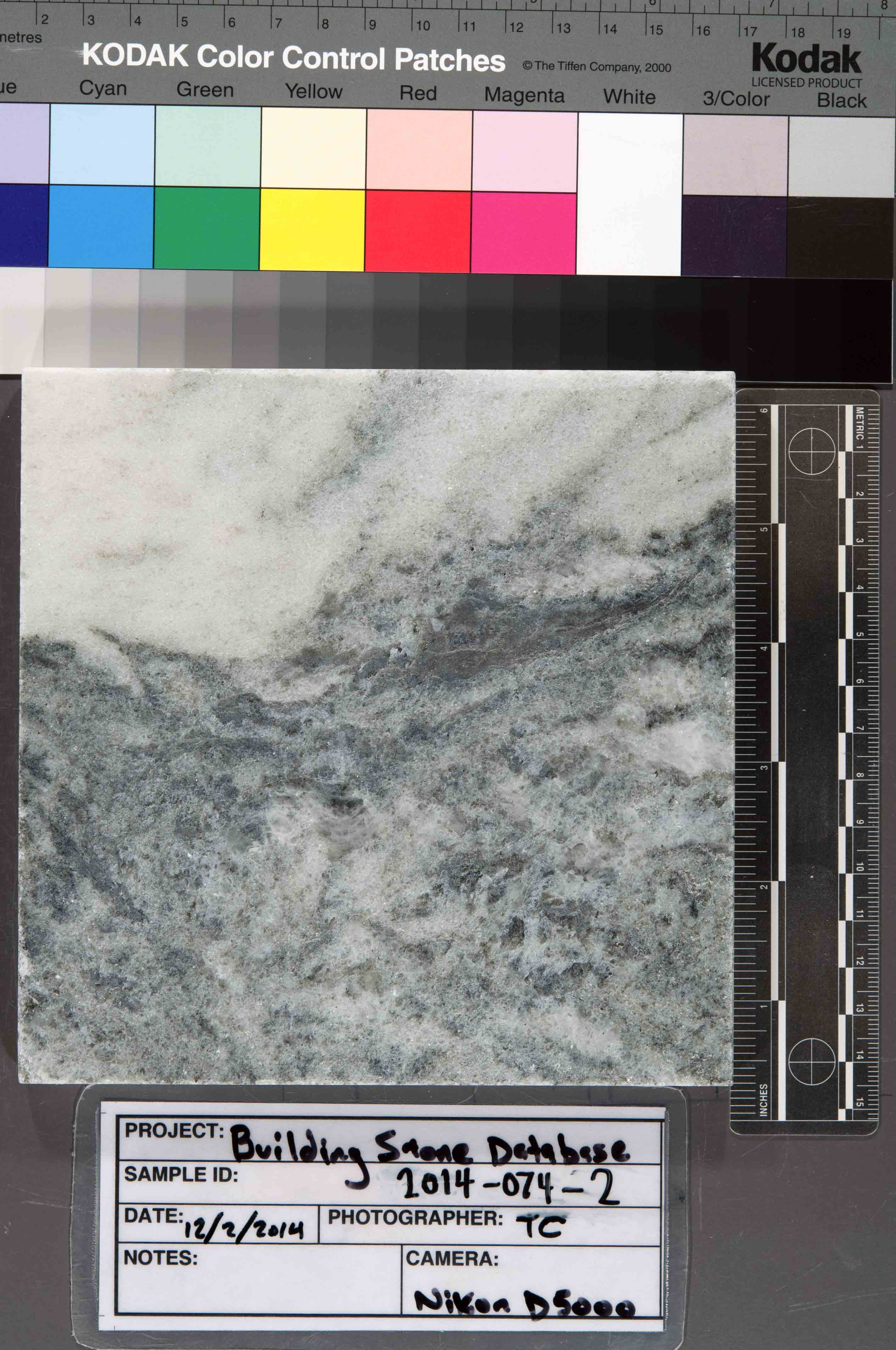 Image of specimen in dry conditions. Finish: Honed