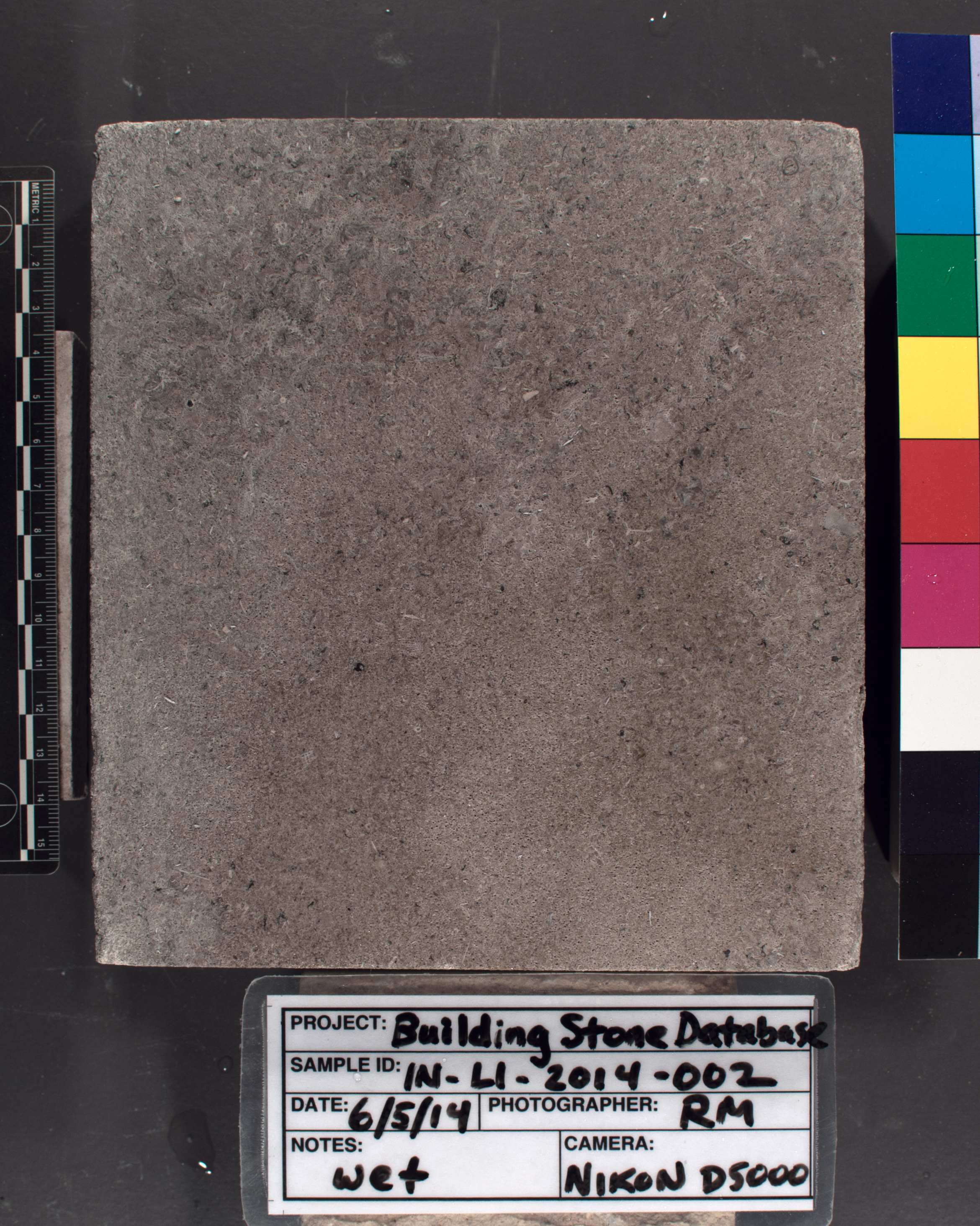 Image of specimen in wet conditions. Finish: Smooth sawn
