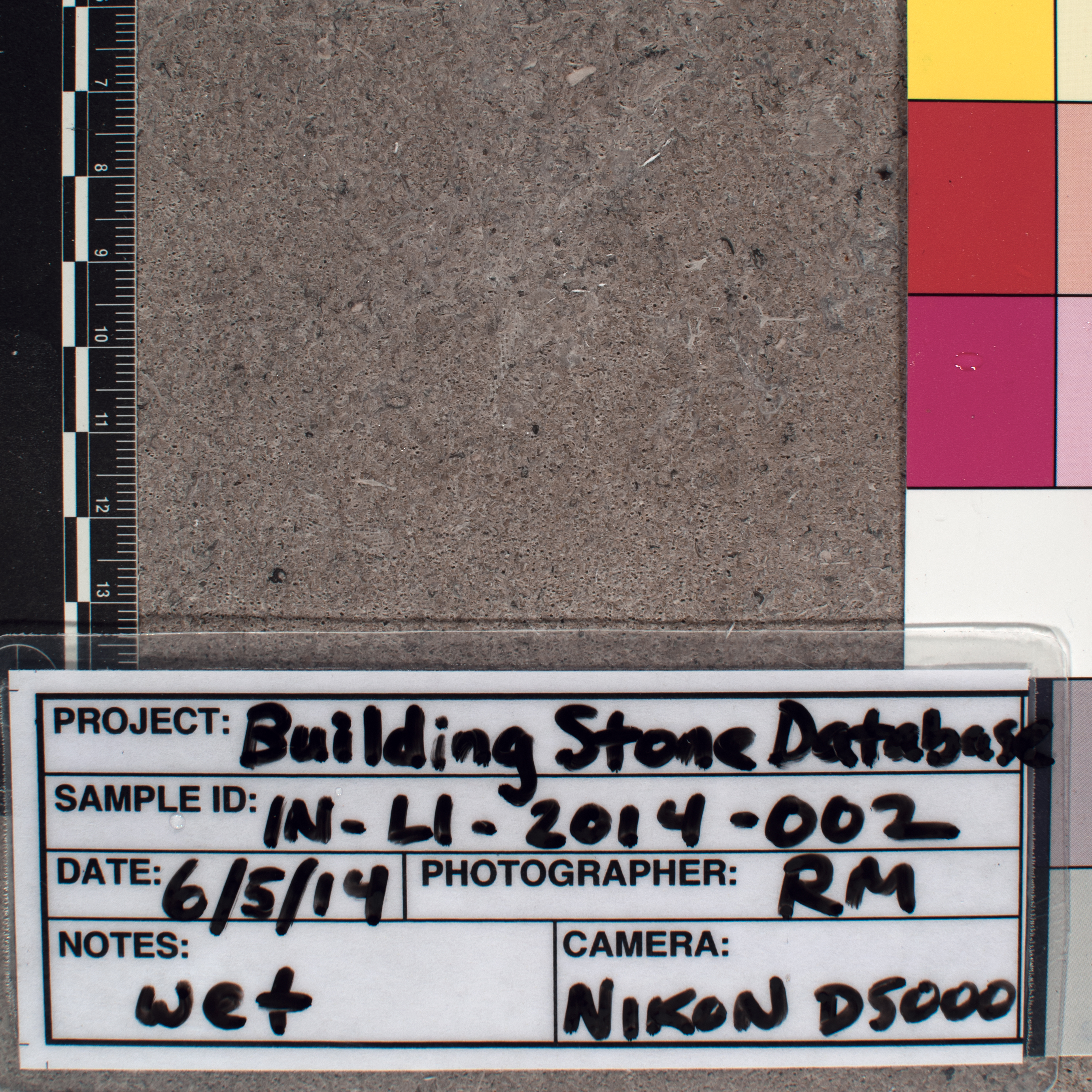 Close-up image of specimen in wet conditions. Finish: Smooth sawn