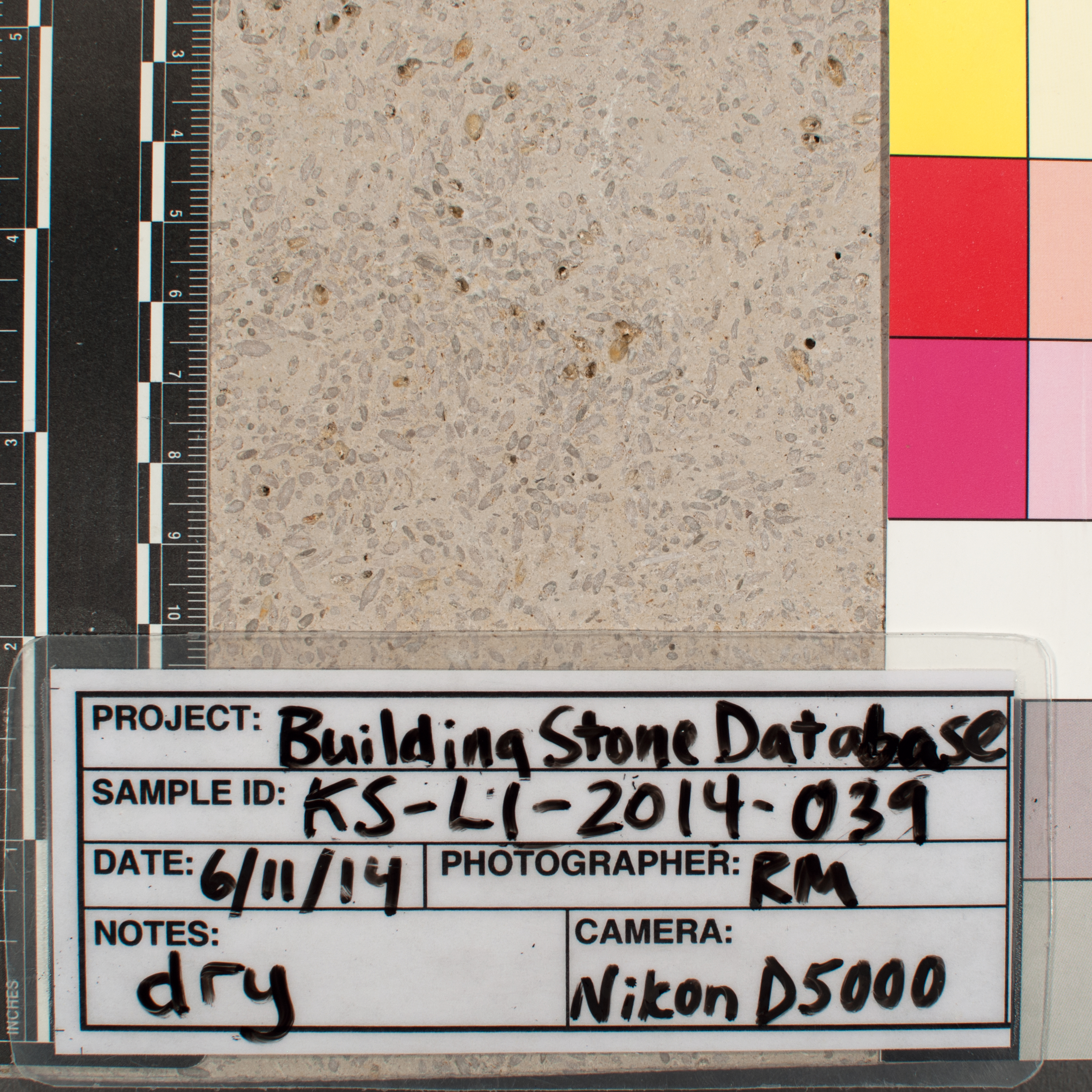 Close-up image of specimen in dry conditions. Finish:
