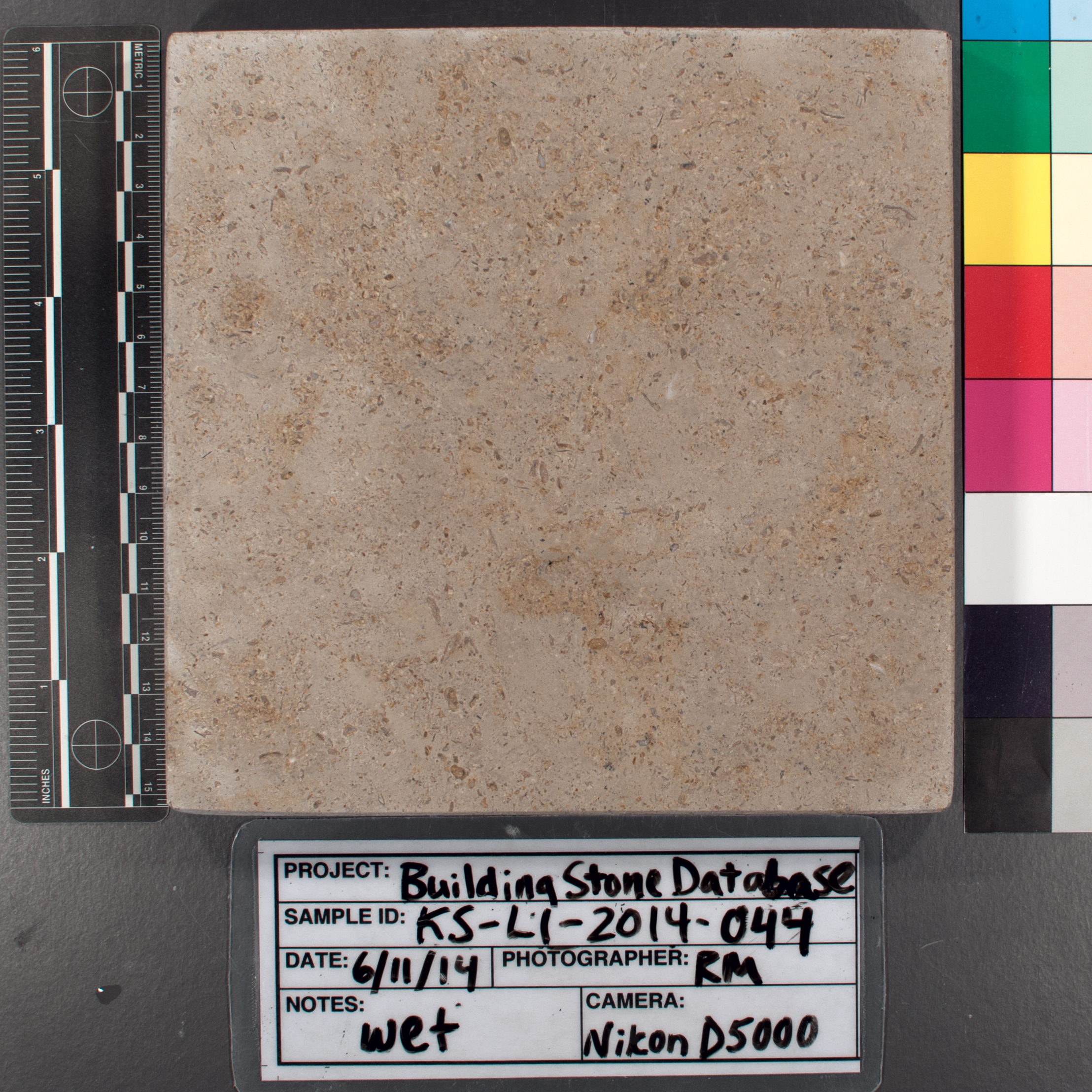 Image of specimen in wet conditions. Finish: