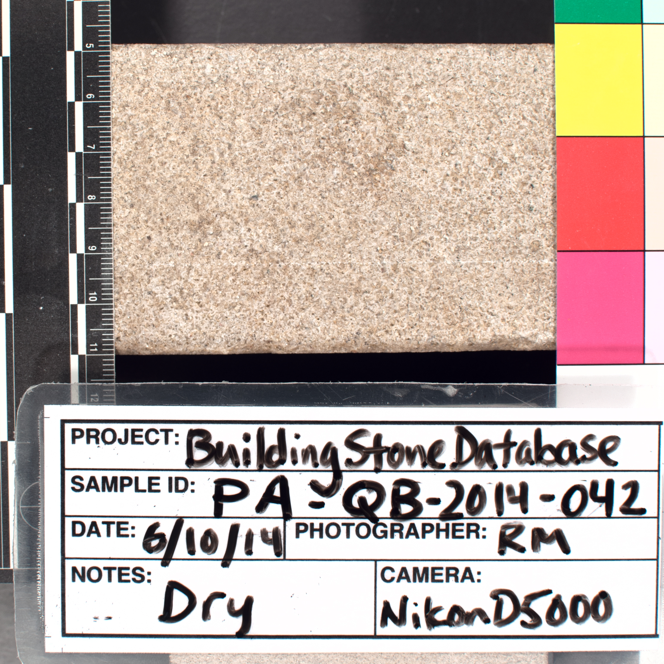 Close-up image of specimen in dry conditions. Finish: Smooth sawn