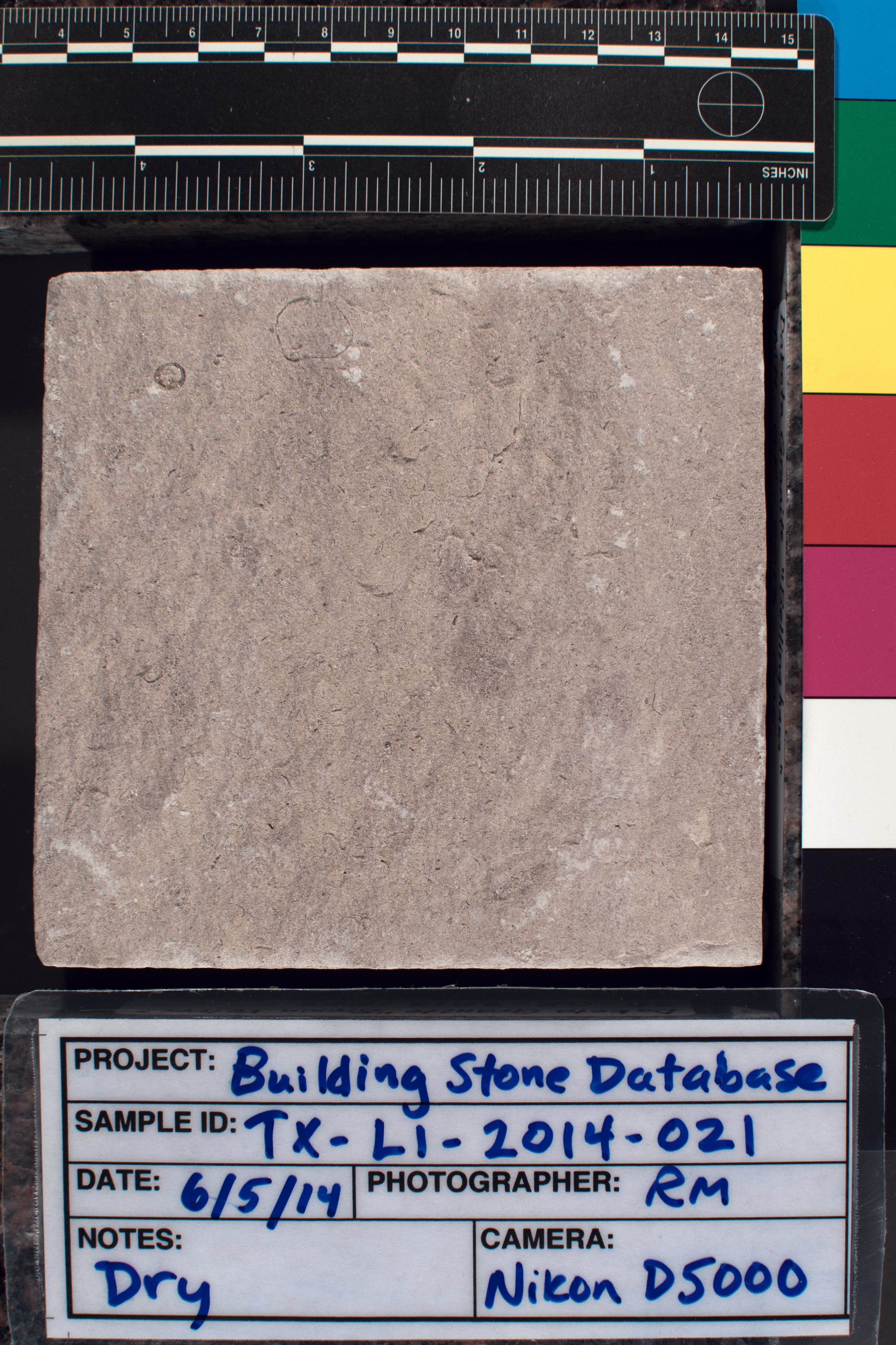 Image of specimen in dry conditions. Finish: Split-faced