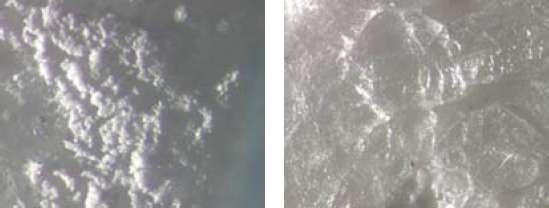 Figure 13. Examples of salt formation on marble samples treated with D/2 (left) and Daybreak (right) both viewed under 100x magnification.
