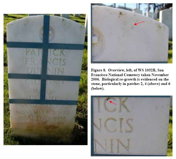 Figure 8. Overview, left, of WS 1032B, San Francisco National Cemetery taken November 2006. Biological re-growth is evidenced on the stone, particularly in patches 2, 4 (above) and 6 (below).