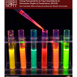 Nanotechnology and Materials Testing: Using Nanoparticles to Tag Consolidant to Determine Depth of Penetration (2011-05):