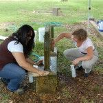 Cemetery Monument Conservation Basics: