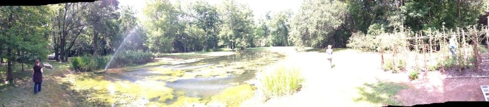 Interns Stephanie Byrd and Miriam Tworek-Hofstetter explore the pond and gardens of the Cazayoux Residence. Photo From: Andy Ferrell