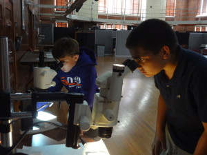 Students compare weathered and unweathered marble samples under magnification.