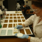 Intern Anna Muto applying rust converter to test samples.
