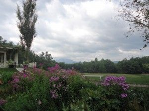 Early 20th century garden at Saint-Gaudens National Historic Site, New Hampshire, where plants are flowering earlier and earlier.