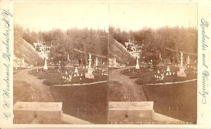Figure 3. This early view of Mount Hope Cemetery depicts the overall, picturesque character of the grounds. Curving drives wind scenically around the dramatically sloping ground plane. Deciduous and evergreen plantings enhance the naturalistic quality and the overall modest style of monuments allows visitors to focus on the beauty of the landscape. Meadow planting covers the steep hillside evident at the left edge of the image. Courtesy Friends of Mount Hope Cemetery.
