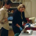 Roane (left) and Nancy Odegaard (right), conservator and head of preservation at the Arizona State Museum, assess an artifact in the cleaning study.