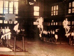 Students working out in the gym