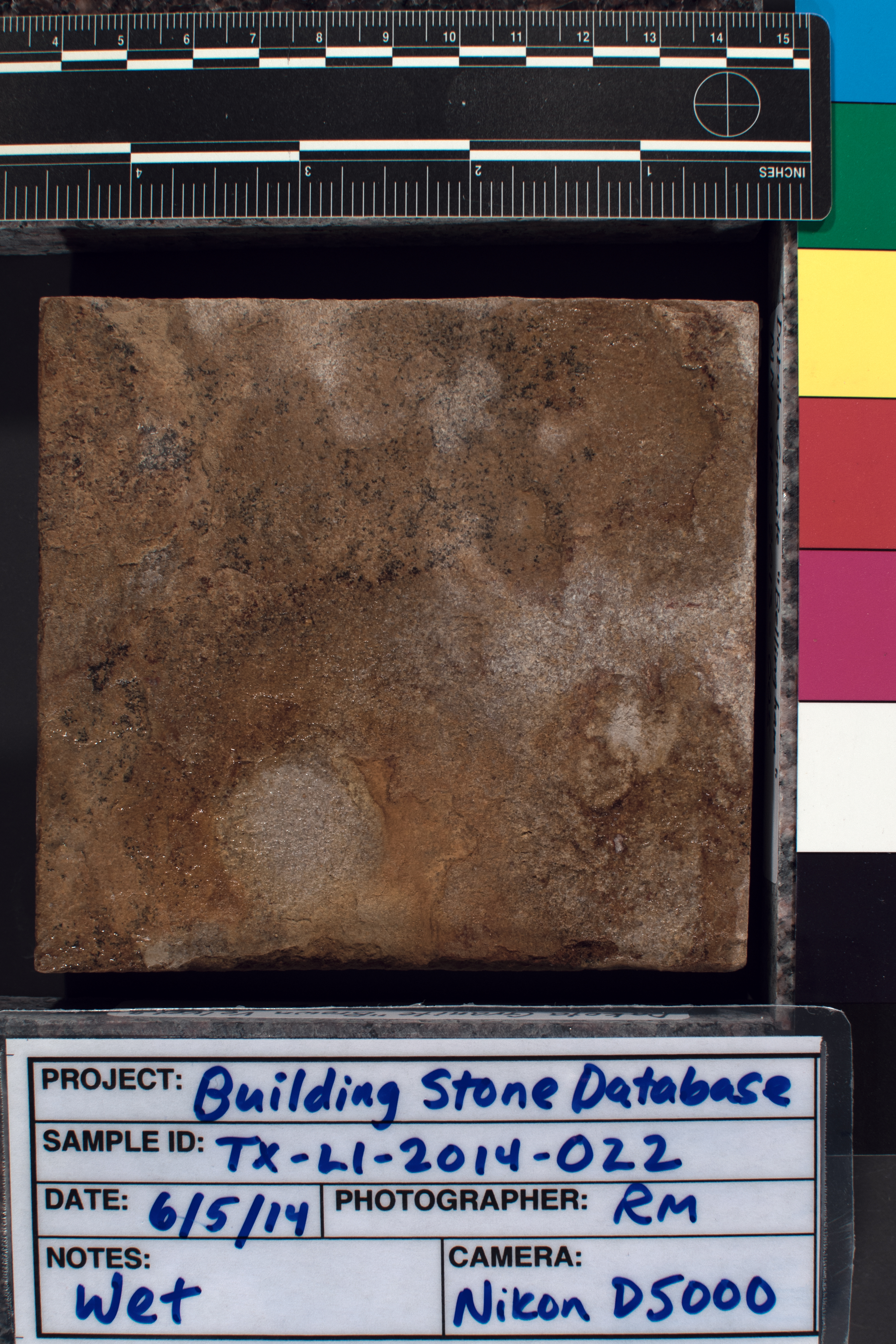 Image of specimen in wet conditions. Finish: Split-faced