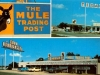 Rolla, Missouri - Mule Trading Post