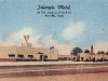 Amarillo, Texas - Triangle Motel, linen postcard