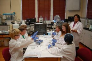 Students enjoy hands-on lab experience at Lee H. Nelson Hall.