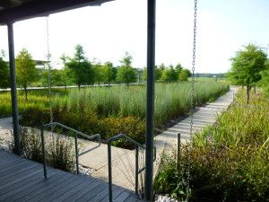 The St. Landry Parish Visitor's Center garden uses a pathway to separate two landscapes that highlight Louisiana fauna Photo From: Andy Ferrell