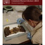 Microbial Detoxification of Mercury Contaminated Museum Collections (2006-03):
