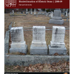 Development of a Rapid Indicator of Biodeterioration of Historic Stone (2008-09):
