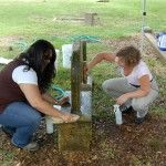 Cemetery Monument Conservation Basics