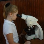 Fifth Graders Learn about the Effects of Acid Rain on Cultural Materials: And How Polymers Can Help