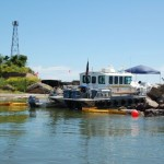 Oil & Cultural Resources: Lessons Learned from Recent Oil Spills