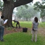 Capturing a tree inspection on video at Oakland Plantation, Cane River Creole National Historical Park