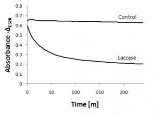Figure 2.  Decolorization of prodigiosin.  Absorbance –ΔE570 of the prodigiosin solution from 0 to 240 m after the addition of laccase.  Data are the averages of three reactions.