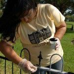 Basics for Iron Fencing Care TelNPS: