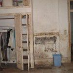 Mold hazard in a historic New Orleans home post Hurricane Katrina.