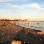 NCPTT Archeologist Surveys Hurricane Sandy Effects.: