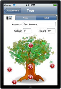 Tree Assessments (iOS app)