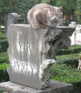 """The cemetery is also know for the """"wildlife""""."""