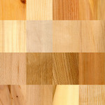Wood Identification for Preservation Professionals